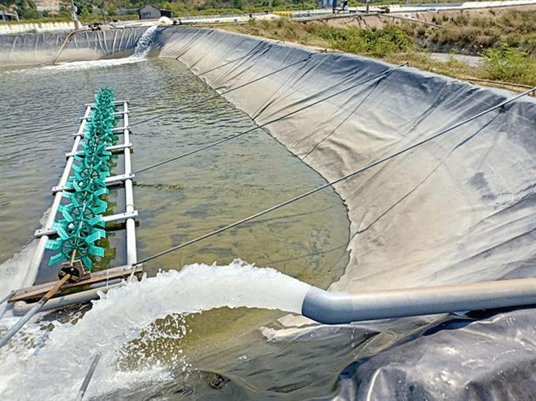 Các tiêu chí chính để lựa chọn công nghệ cấp nước cho nuôi trồng thủy sản