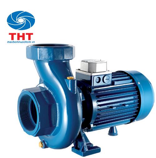Máy bơm nước lưu lượng Pentax CST 100/2  1HP