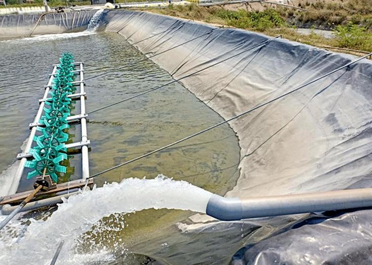 Đặc điểm của máy bơm nước nuôi tôm